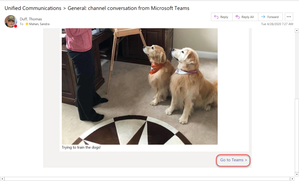 Machine generated alternative text: Unified Communications > General: channel conversation from Microsoft Teams  CD Reply  Duff, Thomas  To O Mahan, Sandra  Trying to train the dogs!  S Reply All  Fomard  Tue 4/28/2020 7:27 AM  Go to Teams >